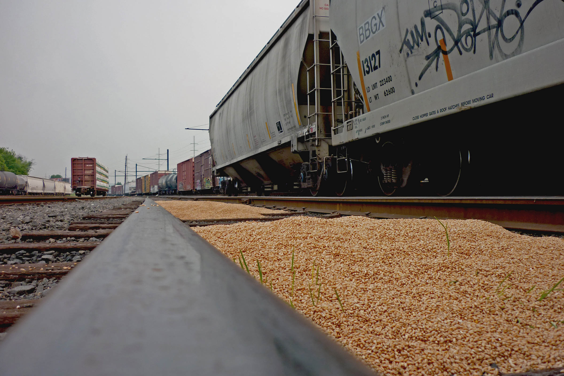 Close-up of a pile of grain that has leaked from a rail car, USA, 2010.